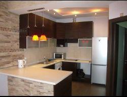 Кухня-студия_фото3
