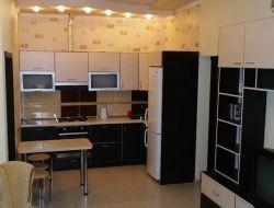 Кухня-студия_фото5