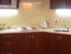 Кухня-студия_фото4