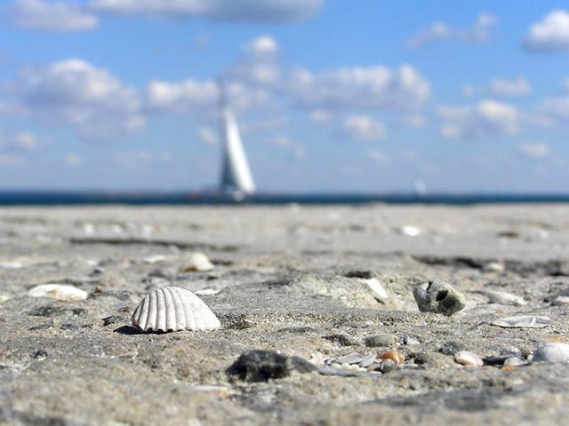 маникюр на море фото френч